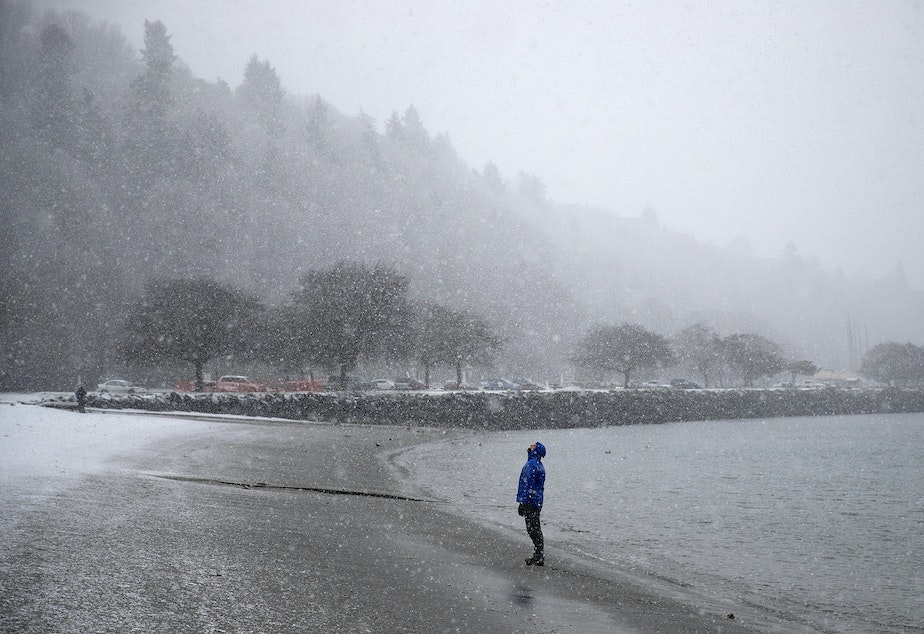 caption: Scott Goodall looks toward the falling snow while walking along the beach on Wednesday, January 15, 2020, at Golden Gardens Park in Seattle.