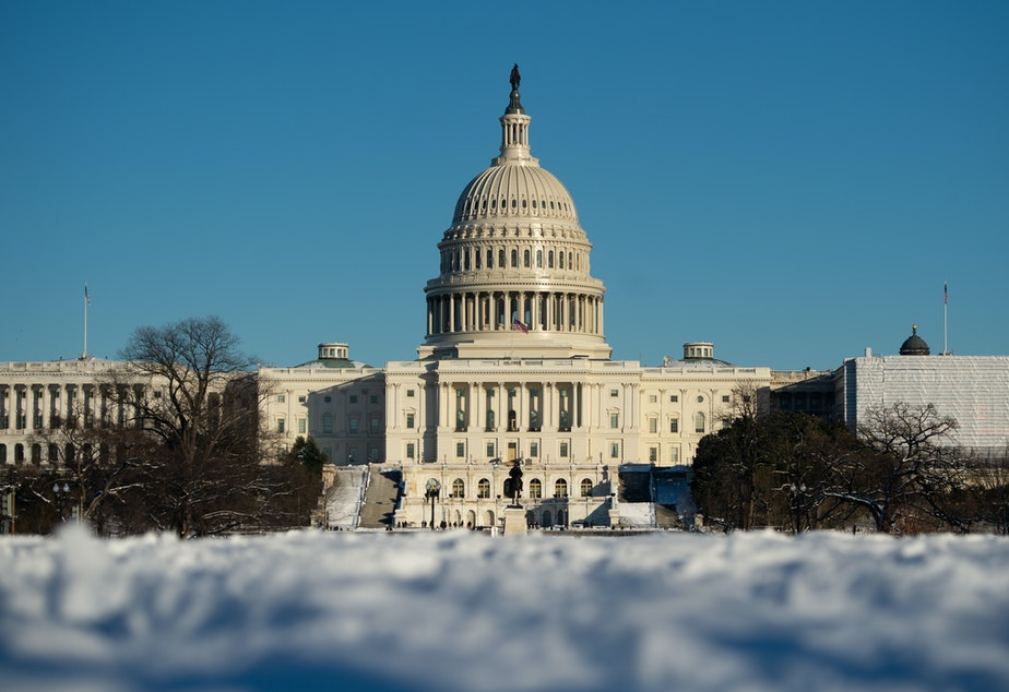 caption: The US Capitol in Washington, DC, January 14, 2019, is seen following a snowstorm.