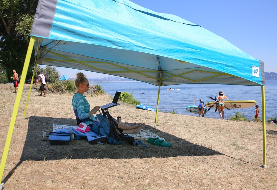 """caption: Jenna Shimek works on her laptop at Colman Beach, Monday, between periodic dips in the Lake Washington. """"It's cooler than anywhere else I could be,"""" she said."""